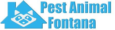 Fontana Wildlife and Animal Removal